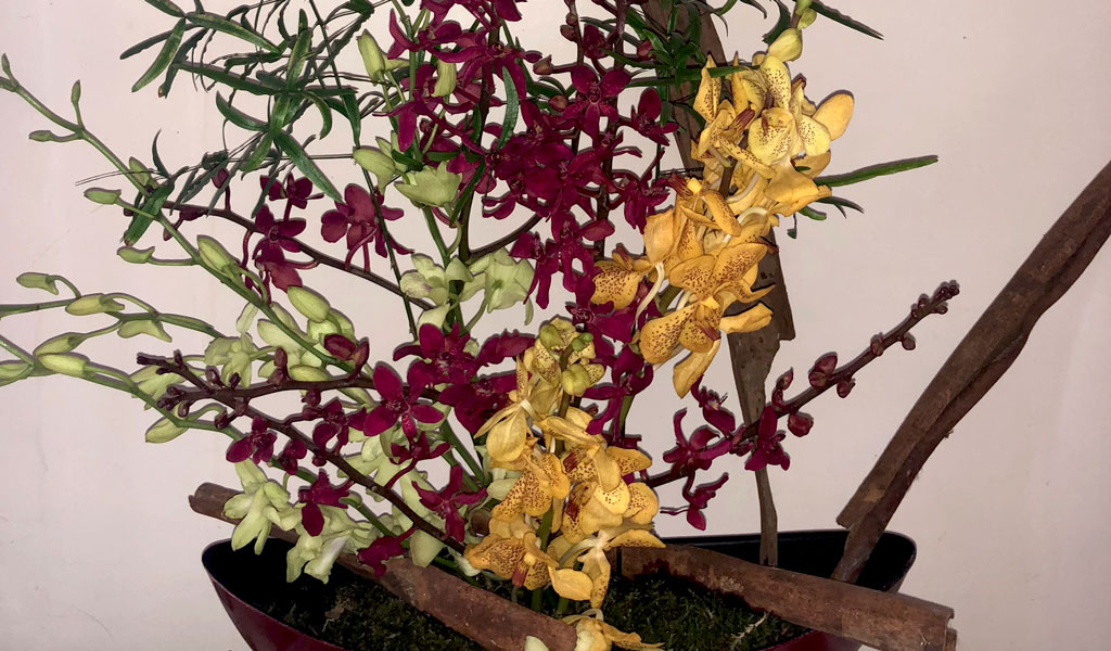 green-red-yellow-bouquet-of-orchids-afv
