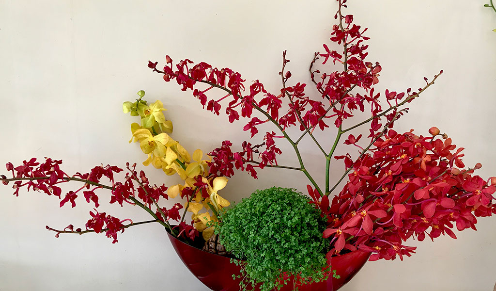 bouquet-yellow-red-green orchid afv