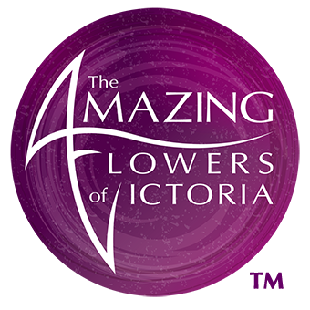The Amazing Flowers Of Victoria Thai Orchids Grower & Exporter The Largest Choice